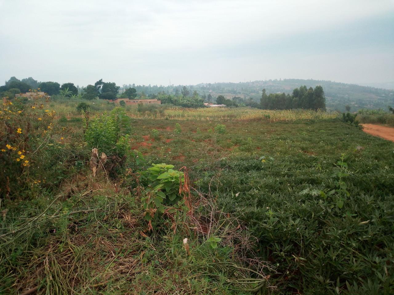 Purchased land in Rwanda